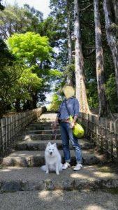 箱根公園4