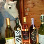 ワイン狩り