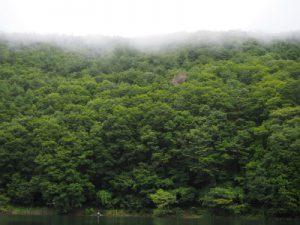 四尾連湖カヤックひといき荘8